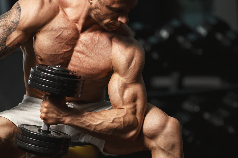 3 Rules to Consistently Make Muscle Gains