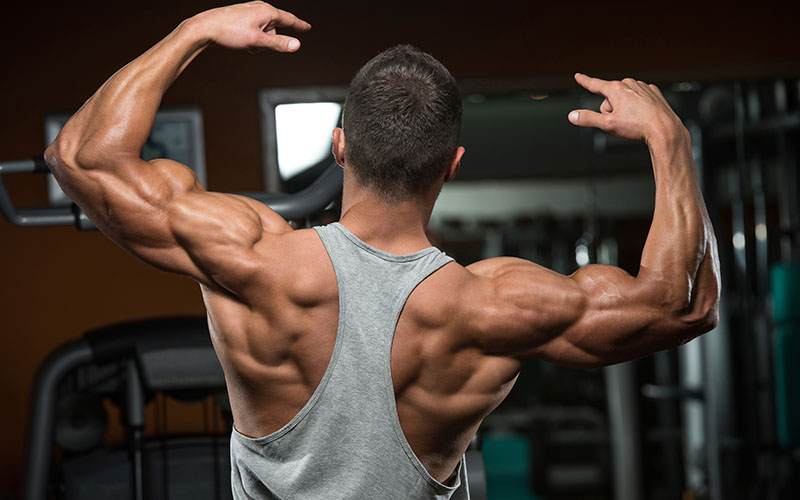 gaining muscle while cutting steroids