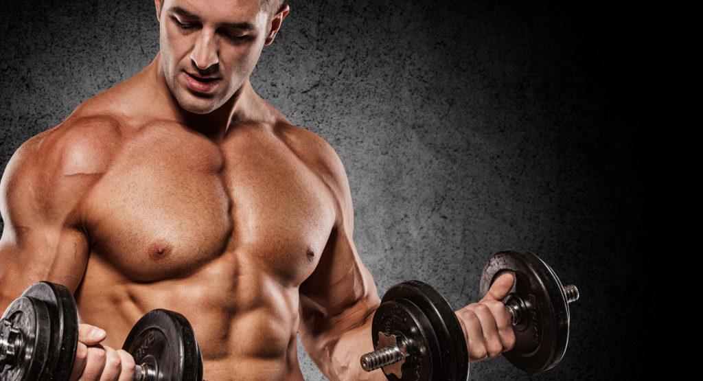 筋肥大のための高ホルモン状態