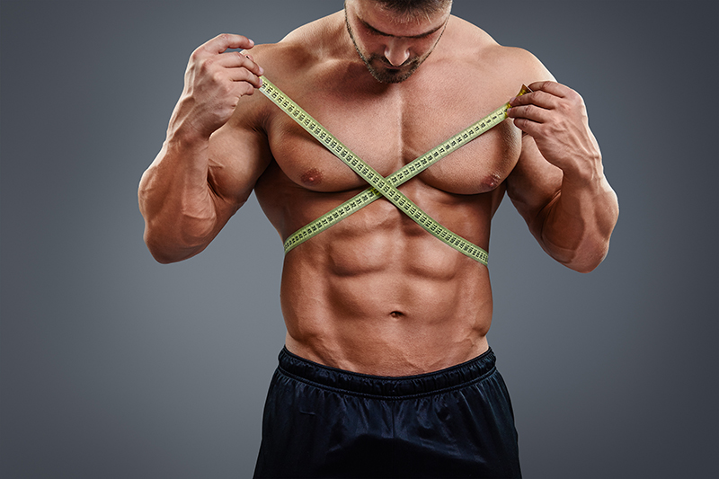 muscle building
